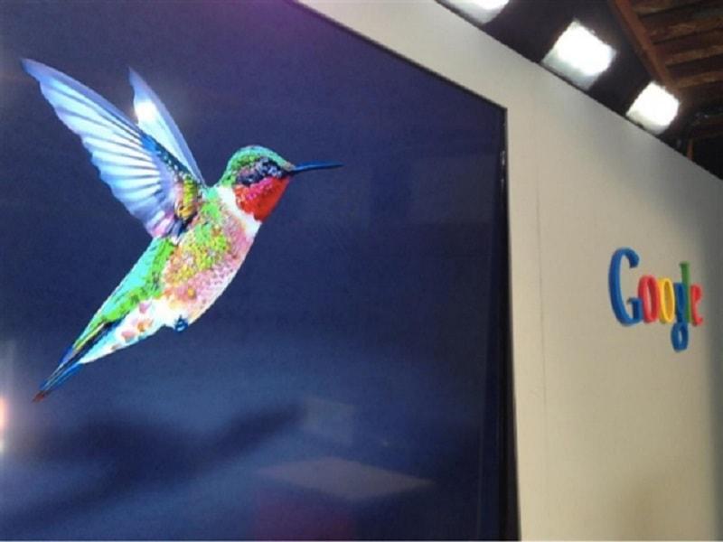 cac-thuat-toan-google-anh-huong-den-seo-3-Hummingbird