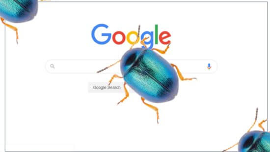 google bug 1920 550x310 1